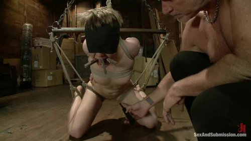 Download Sex And Submission – Alani Pi Free